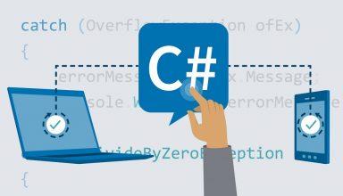 Professional C# Homework Help