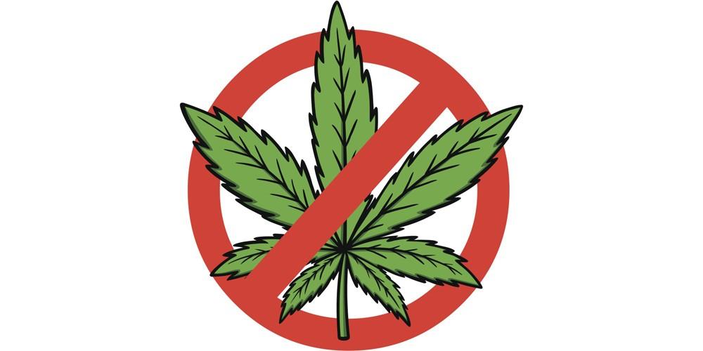 marijuana good for adult's health